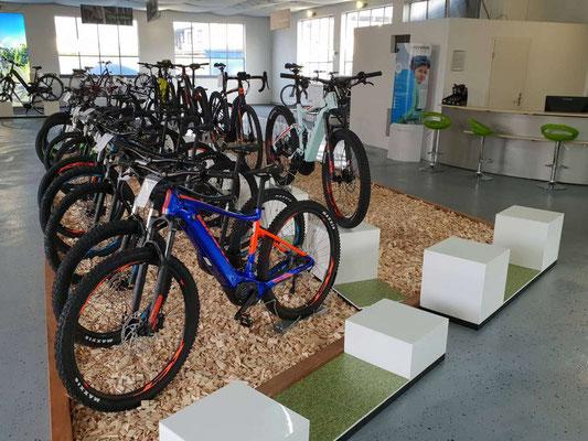 e-Mountainbike Markenauswahl in der e-motion e-Bike Welt Karlsruhe