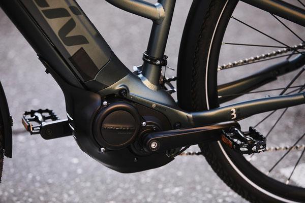 Liv Amiti E+2 e-Bikes in der e-motion e-Bike Welt in Düsseldorf kaufen