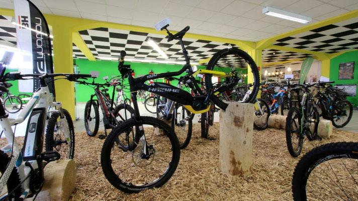 Testen Sie bei einer kostenlosen Probefahrt die neusten e-Bike und Pedelec Modelle in der e-motion e-Bike Welt Bern in der Schweiz