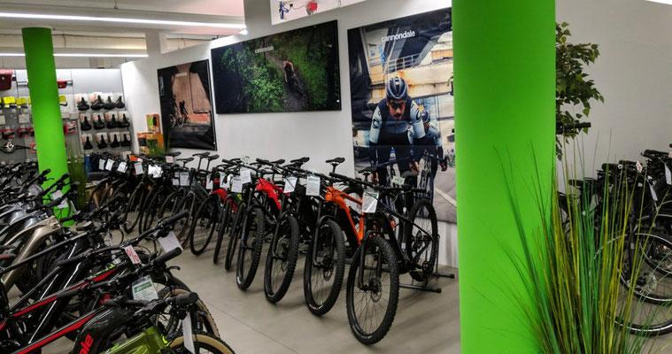 e-Mountainbikes vom Experten in der e-motion e-Bike Welt in Gießen