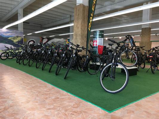 e-Bike Sortiment e-motion e-Bike Welt Nürnberg Ost