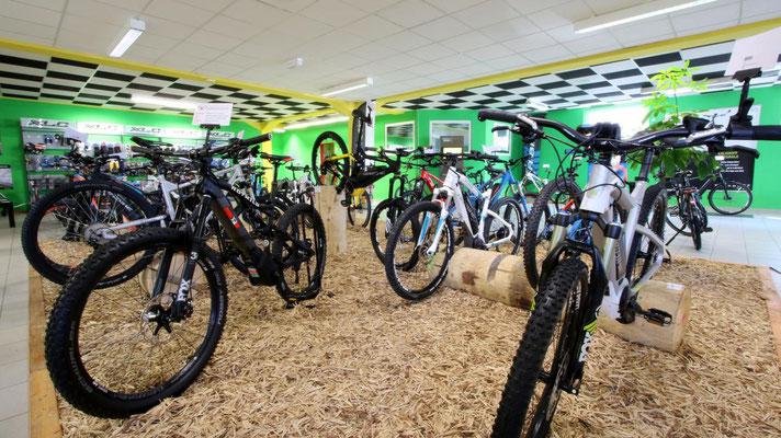 Lassen Sie sich von unseren e-motion e-Bike Experten in Bern rund um das Thema Pedelecs beraten