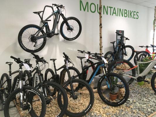 e-Mountainbikes probefahren und kaufen in der e-motion e-Bike Welt Bremen