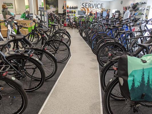 große e-Bike Markenvielfalt in der e-motion e-Bike Welt Bremen