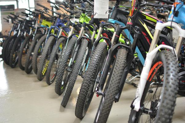 Unsere starke Auswahl an e-Bikes und S-Pedelecs in der e-motion e-Bike Welt Saarbrücken