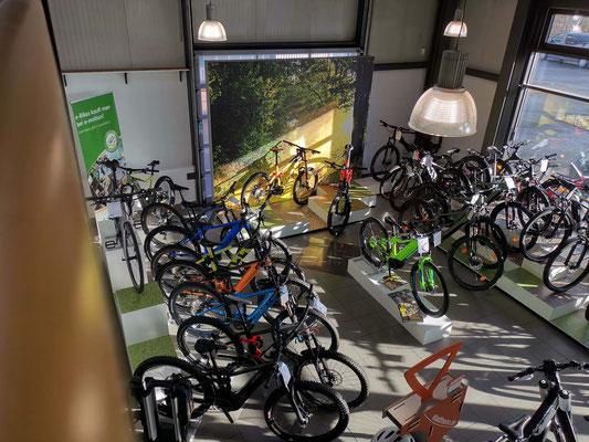 e-motion e-Bike Welt Reutlingen