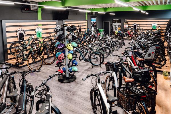 Große Auswahl an e-Bikes in der e-motion e-Bike Welt Harz