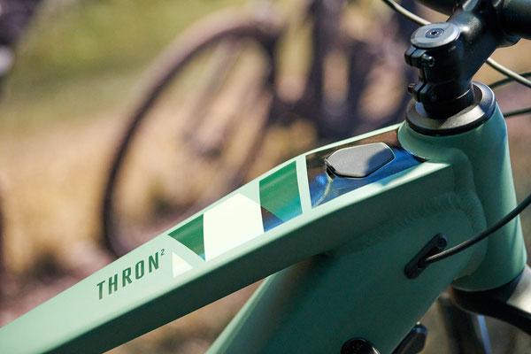 Detailbilder vom Focus Thron²