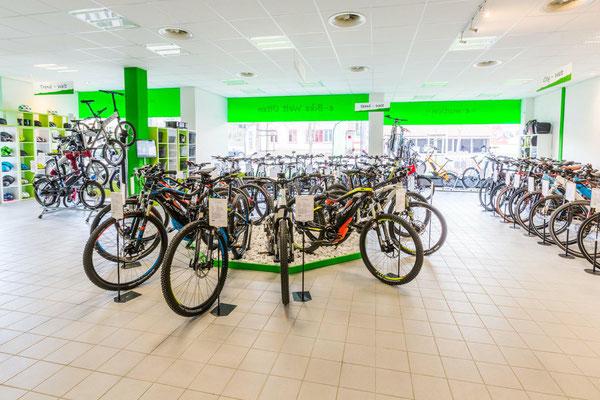 Erleben Sie große e-Bike Markenvielfalt und ein vielseitiges Angebot in der e-motion e-Bike Welt Olten in der Schweiz