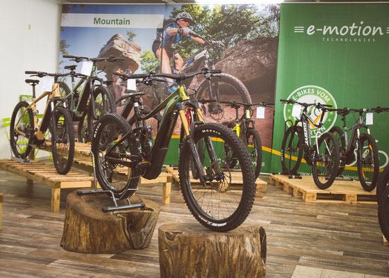 Große e-Bike Auswahl in der e-motion e-Bike Welt St. Wendel