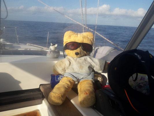 Christophs Teddy auf großer Fahrt