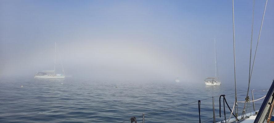 Immer wieder Nebel