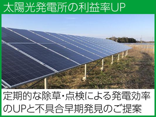 定期的な除草で発電効率の低下予防を。同時点検で不具合の早期発見にも貢献します。