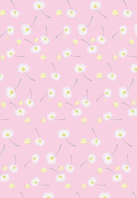Geschenkpapier Gänseblümchen, Ausschnitt