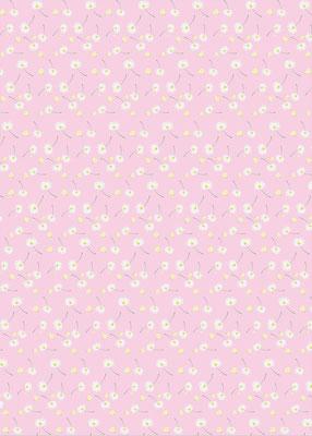 Geschenkpapier Gänseblümchen