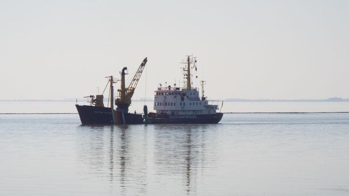 ...die Schiffe der Mayer Werft sind so groß...