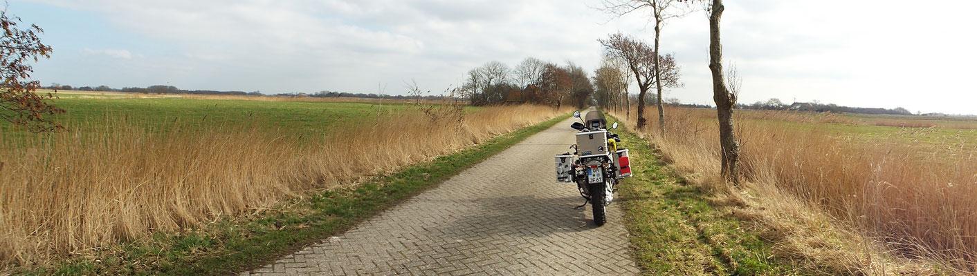 ...und dann wieder diese weite Landschaft, mit dem Bäumen, die mit dem Wind wachsen (Windflüchter)...