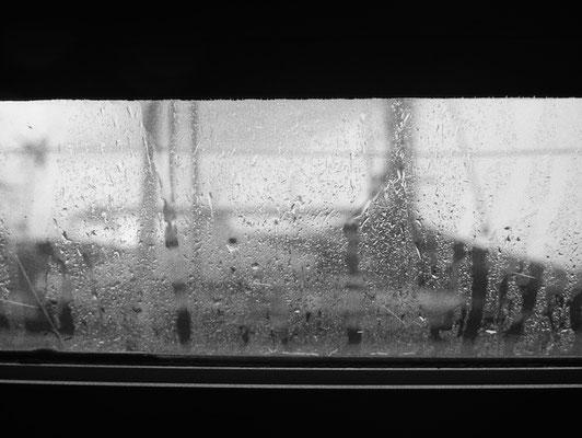Blick am Morgen aus dem Fenster