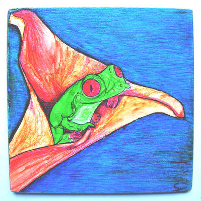 grenouille 6