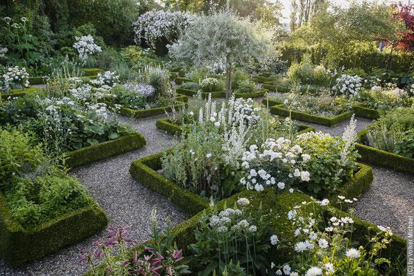 Gartenfotografie von Volker Michael