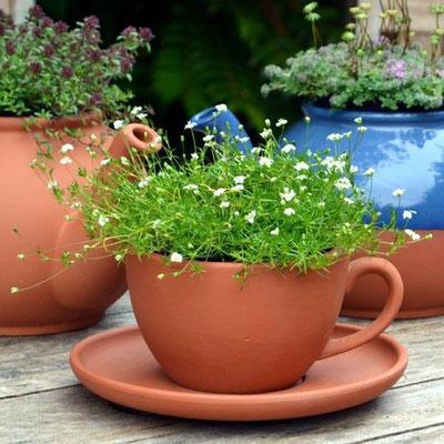 Das Teetassen schöne Pflanztöpfe abgeben beweist dieser Teetassen-Pflanzer. www.the-golden-rabbit.de