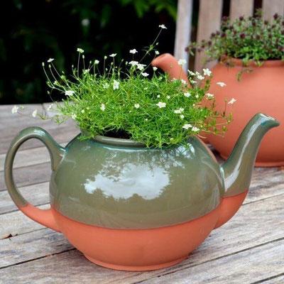 Der Teekannen-Pflanztopf: wunderschön für draußen oder für die Küche als Übertopf für Küchenkräuter. www.the-golden-rabbit.de