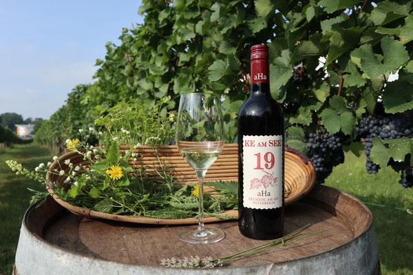 """Winzer Andreas Haider verzichtet, dank KE, seit Jahren auf den Einsatz von Kupfer und hat danach auch seinen Wein benannt. """"KE am See"""""""
