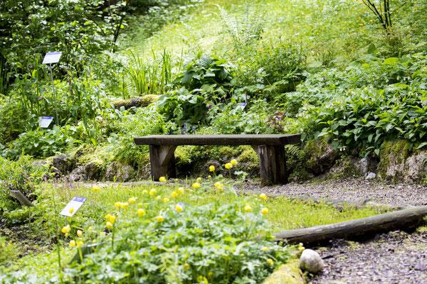 Für Interessierte haben wir einen eigenen Kräutergarten angelegt, der jederzeit kostenlos besucht werden kann.