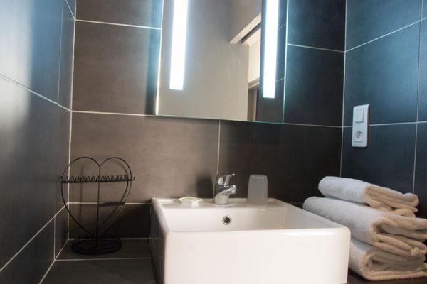 Services hoteliers : serviettes de bain, gel douche et shampoing fournis