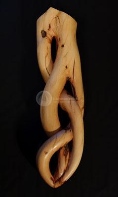 Lebensader, Erdbeerbaum (Corbezzolo) gewachst, 85 cm
