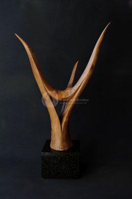 Druidenkopf, Walnussholz
