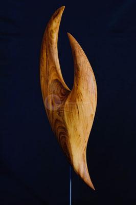 Zyklus - Sein -, Walnußholz geölt, 50 cm
