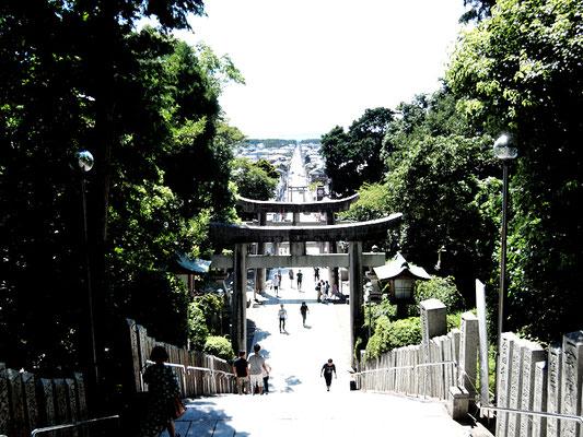 宮地嶽神 - 参道(光の道)