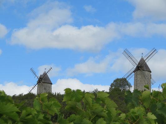 Les moulins de Jonzac