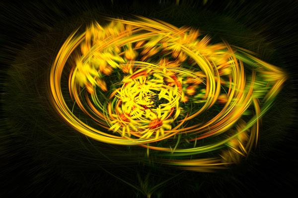 Nature-effet tourbillon Floral