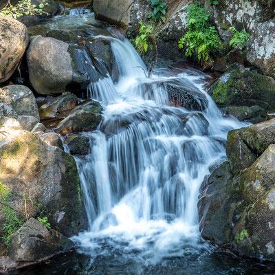 Nature-cascade- pose longue