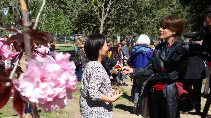 Kumiko entrevistada por Aragón Televisión