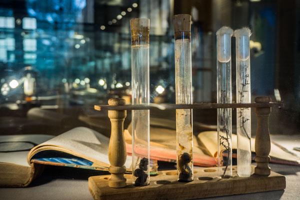 Museum Pasteur