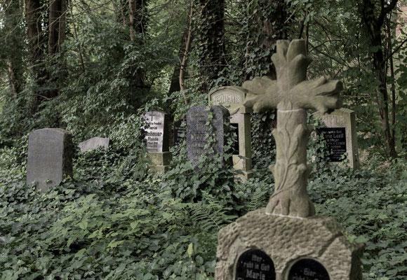 Platz 3 - 10  Fotograf : Regina Reininghaus / Titel : verlassener Friedhof