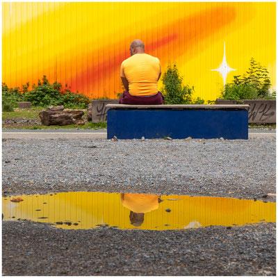 Gelb gibt den Ton