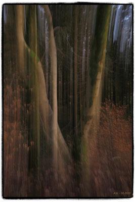 Andreas Ulman - Bäume, gestisch - Wilde Ennepe