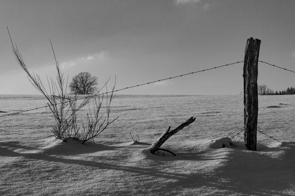 Helmut Willnat - Im Winter müssen Zäune weichen