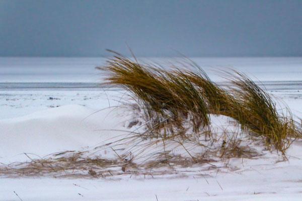 Angelika Nowak - Schneeverwehung am Meer