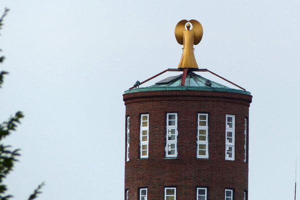 Sigrun Wenzel - Goldengel auf dem Dach
