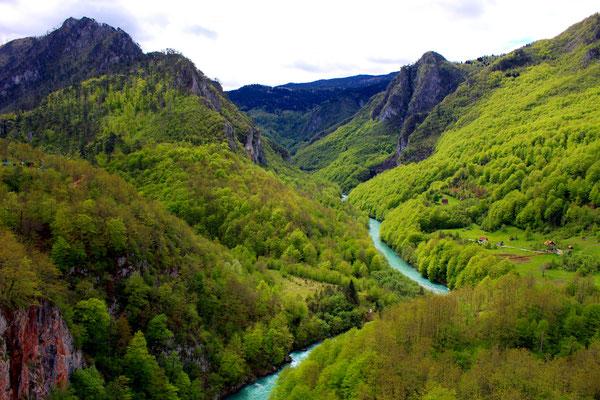 Tara, Montenegro