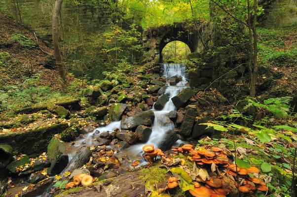 Herbst im Bärengarten bei Hohnstein. ISO 100, 11mm, f/13.0, 3 Sek. (Polfilter).