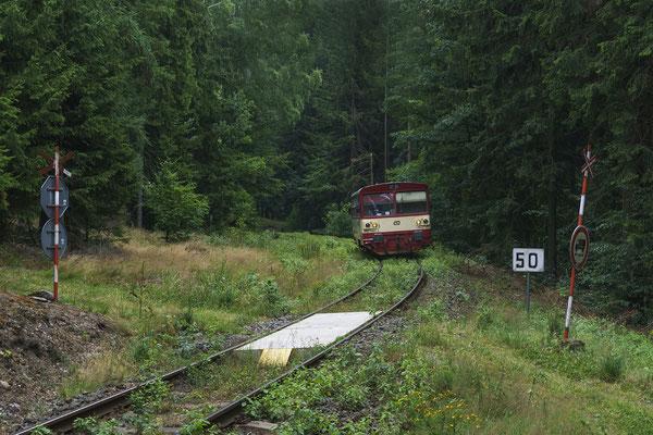 """810 165-1 Rumburk - Mikulášovice im """"Dschungel"""" nahe Brtníky, 29.07.18"""