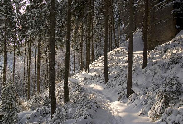 Auf einer Winterwanderung im Gebiet der Affensteine. ISO 125, 18mm, f/5.6, 1/250sek.