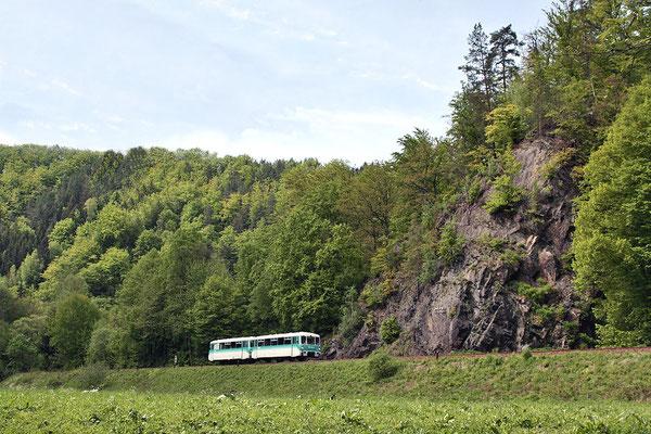 Die Eisenbahnfreunde wurden nach der Wanderung in Kohlmühle wieder eingeladen und die Fahrt ging zurück über Neustadt & Pirna nach Löbau. Hier fährt der Zug durchs schöne Sebnitztal unterhalb des Goßdorfer Raubschlosses. 16.05.10, Foto: Jürgen Vogel
