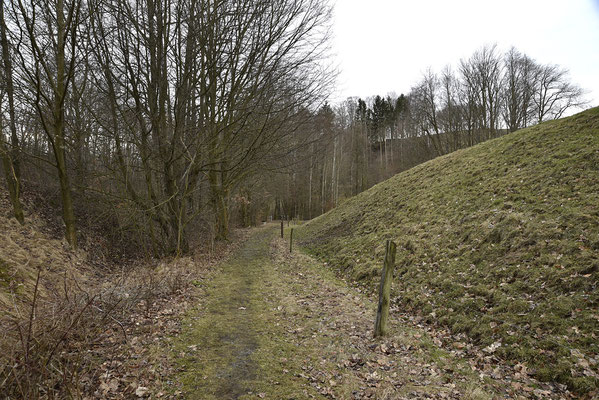 Nach einem kurzen Stück durch den Wald erreicht der Bahndamm diesen Lichtungseinschnitt. Blickrichtung Lohsdorf, 04.03.19